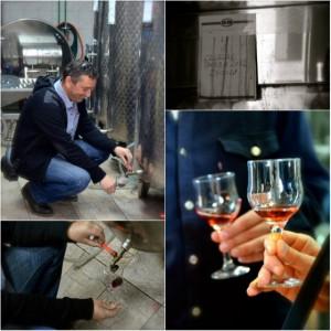 Private wine tasting in Split, Croatia