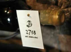 Medvid & Medvjedica – garage wines on steroids
