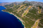 Hvar Island Wine Tour