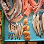Fish market in Split, Croatia